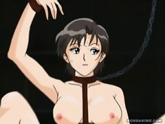 Nasty anime slut begs to be untied but still gets her wet pussy and tight ass filled by a dildo